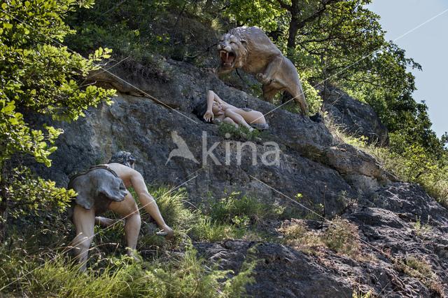 Euraziatische holenleeuw (Panthera leo spelaea)