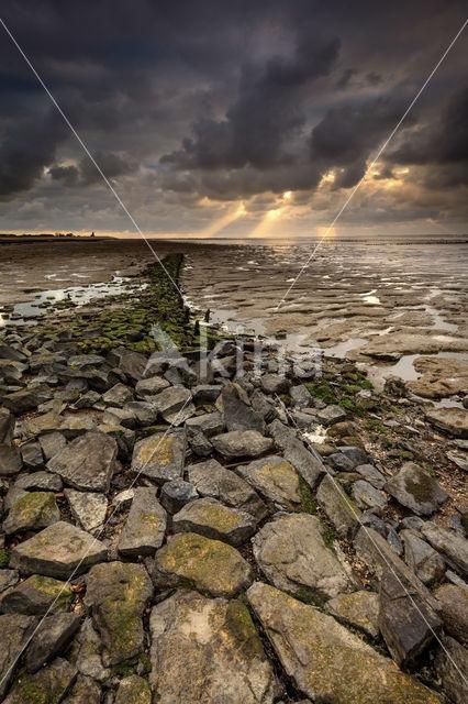 Zeedijk Wierum