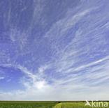 Noord-Friesland