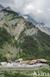 Mont Blanctunnel