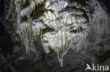 Grotten van Han