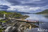 MV Glenachulish