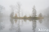Grenspark Maas-Swalm-Nette