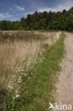 Nationaal Park Grenspark De Zoom