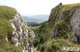 Longevilles-Mont-d Or