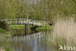 Ankeveense polder