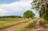 Naturschutzgebiet Lampertstal