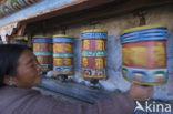 Galden Namgyal Lhatse klooster