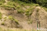 Geologisch monument Heimansgroeve