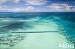 Grote oceaan