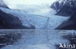 Gletsjer Garibaldi