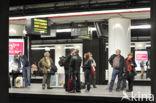 Station Brussel-Centraal