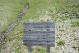 Nationaal Park Hohe Tauern